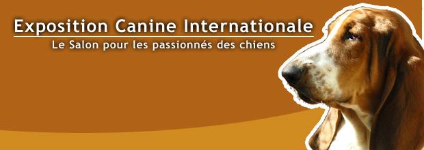 Photo : Exposition Canine Internationale