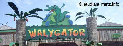 Photo : Walygator, une nouvelle saison est lancée